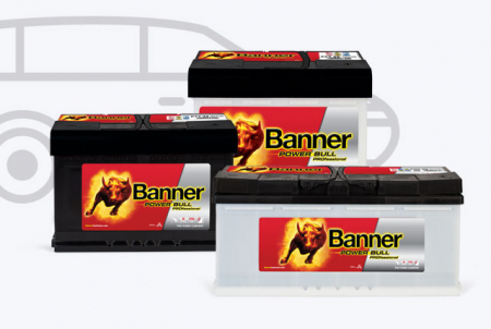 Power Bull PRO Batterien